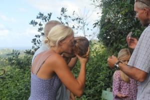 vi drikker kokosmælk, flower forest, Barbados