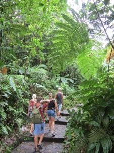 På vej ind i regnskoven med Stine, Michael og Storm, Guadeloupe