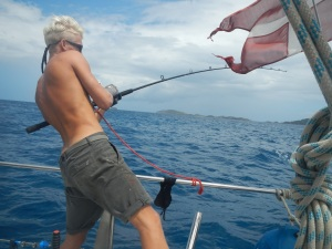 fanger fisk