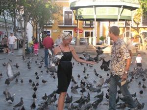 Fodrer duer, San Juan