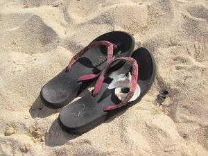 koraller og slebet glasskår i skoen